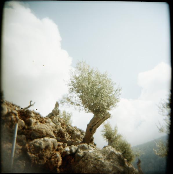 Mallorca-10